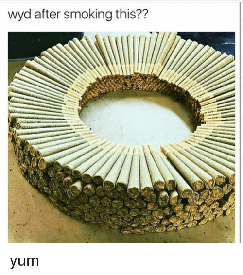 Memes, Smoking, and Wyd: wyd after smoking this?? yum