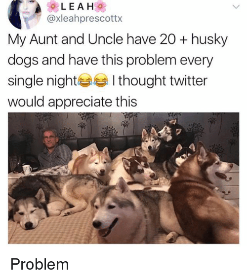 Dogs, Twitter, and Appreciate: @xleahprescottx  My Aunt and Uncle have 20 + husky  dogs and have this problem every  single nightI thought twitter  would appreciate this  2 Problem