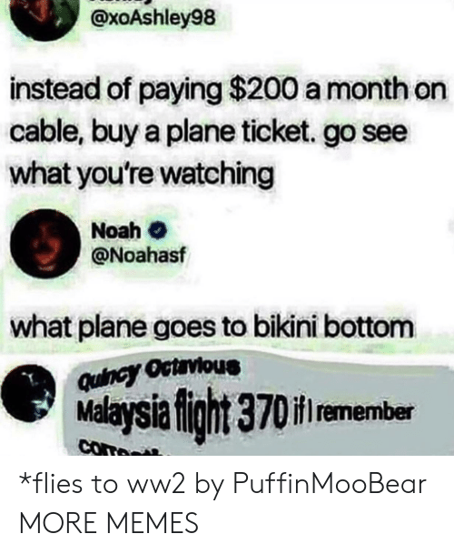 Dank, Memes, and Target: @xoAshley98  instead of paying $200 a month on  cable, buy a plane ticket. go see  what you're watching  Noah  @Noahasf  what plane goes to bikini bottom  Quincy Octrvious  Malaysia fight 370if remember  com *flies to ww2 by PuffinMooBear MORE MEMES