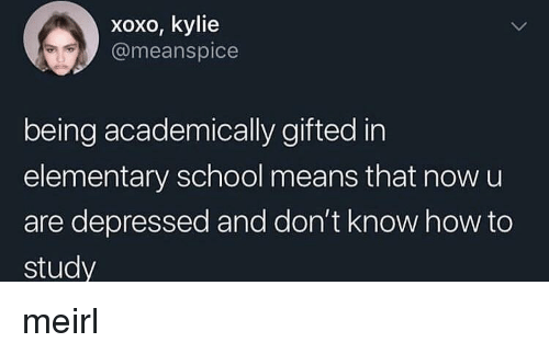 School, Elementary, and How To: xoxo, kylie  @meanspice  being academically gifted in  elementary school means that now u  are depressed and don't know how to  study meirl