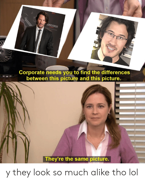Lol, Dank Memes, and Corporate: xpertAccident  ONCORDE  Corporate needs you to find the differences  between this picture and this picture.  They're the same picture. y they look so much alike tho lol