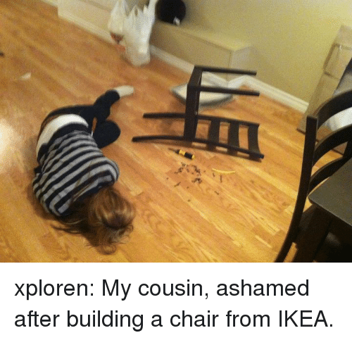 Ikea, Tumblr, and Blog: xploren:  My cousin, ashamed after building a chair from IKEA.