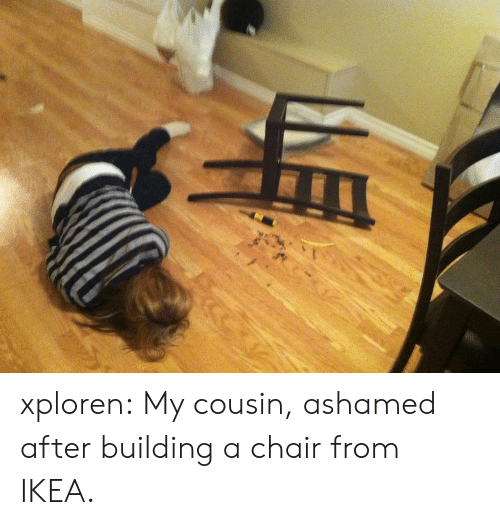 Xploren My Cousin Ashamed After Building a Chair From IKEA