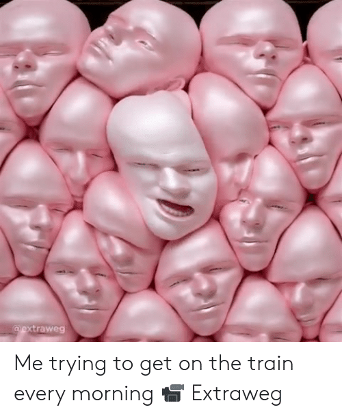 Dank, Train, and 🤖: xtraweg Me trying to get on the train every morning  📹 Extraweg