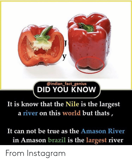 Instagram, True, and Brazil: y  @indian_fact_genius  DID YOU KNOW  It is know that the Nile is the largest  a river on this world but thats,  It can not be true as the Amason River  in Amason brazil is the largest river From Instagram
