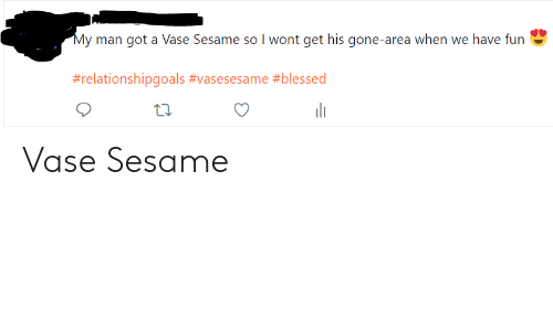 Blessed, Got, and Fun: y man got a Vase Sesame so I wont get his gone-area when we have fun  #relationshipgoals #vasesesame #blessed  t1. Vase Sesame
