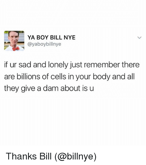 Funny, Meme, and Sadness: YA BOY BILL NYE  ayaboybillnye  if ur sad and lonely just remember there  are billions of cells in your body and all  they give a dam about is u Thanks Bill (@billnye)