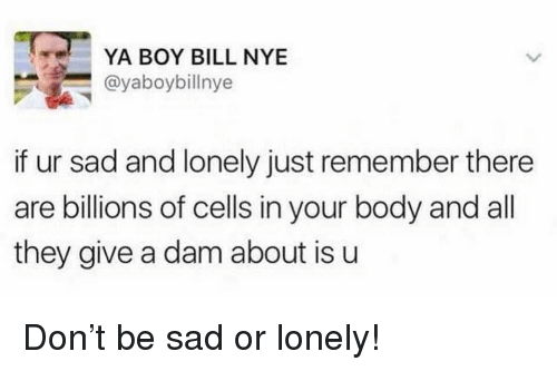 Bill Nye, Sad, and Boy: YA BOY BILL NYE  @yaboybillnye  if ur sad and lonely just remember there  are billions of cells in your body and all  they give a dam about is u <p>Don't be sad or lonely!</p>