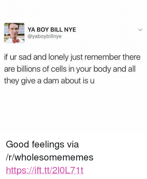 "Bill Nye, Good, and Sad: YA BOY BILL NYE  @yaboybillnye  if ur sad and lonely just remember there  are billions of cells in your body and all  they give a dam about is u <p>Good feelings via /r/wholesomememes <a href=""https://ift.tt/2l0L71t"">https://ift.tt/2l0L71t</a></p>"