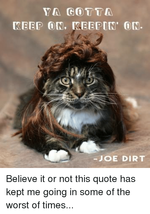 pretty joe dirt quotes pictures   yarn i am always nice to