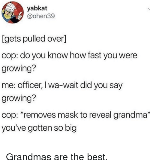 Grandma, Best, and Mask: yabkat  @ohen39  [gets pulled over]  cop: do you know how fast you were  growing?  me: officer, I wa-wait did you say  growing?  cop: removes mask to reveal grandma*  you've gotten so big Grandmas are the best.