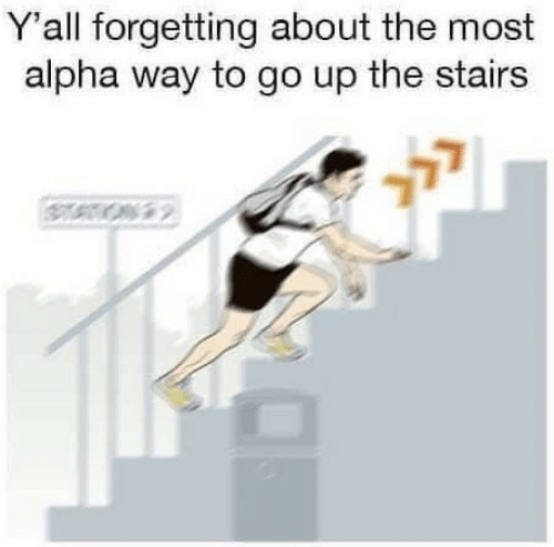 Alpha, Yall, and  Way: Y'all forgetting about the most  alpha way to go up the stairs  2>2
