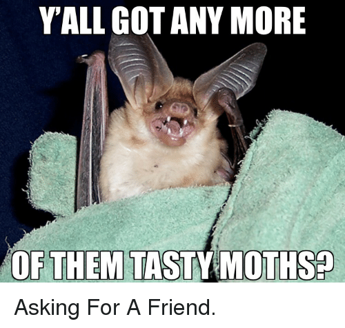 Asking, Got, and Friend: YALL GOT ANY MORE  OF THEM TASTY MOTHSP Asking For A Friend.