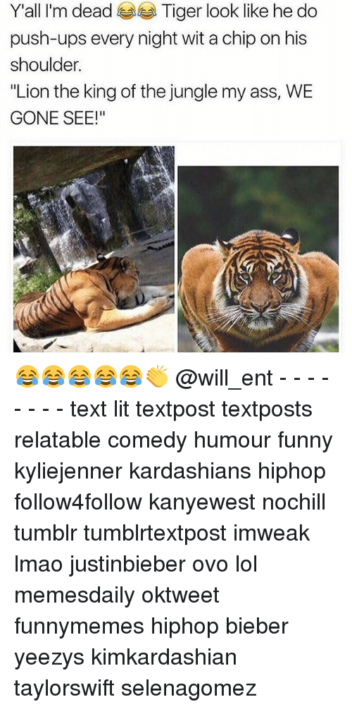"Ass, Funny, and Kardashians: Y'all I'm dead  Tiger look like he do  push-ups every night wit a chip on his  shoulder.  ""Lion the king of the jungle my ass, WE  GONE SEE!"" 😂😂😂😂😂👏 @will_ent - - - - - - - - text lit textpost textposts relatable comedy humour funny kyliejenner kardashians hiphop follow4follow kanyewest nochill tumblr tumblrtextpost imweak lmao justinbieber ovo lol memesdaily oktweet funnymemes hiphop bieber yeezys kimkardashian taylorswift selenagomez"