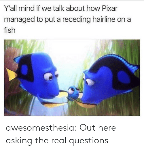 Hairline, Pixar, and Tumblr: Y'all mind if we talk about how Pixar  managed to put a receding hairline on a  fish awesomesthesia:  Out here asking the real questions
