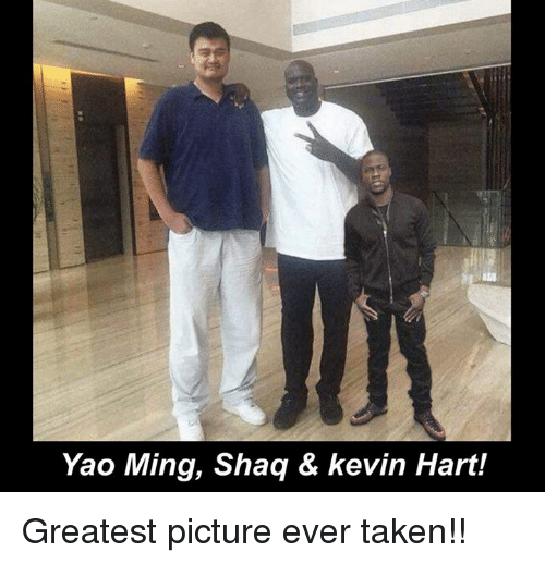 Kevin Hart, Memes, and Shaq: Yao Ming, Shaq & kevin Hart! Greatest picture ever taken!!