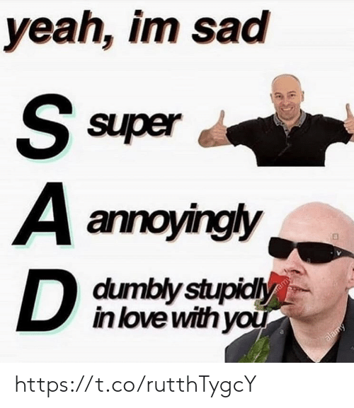 Love, Memes, and Yeah: yeah, im sad  S super  A annoyingly  D  dumbly stupidly  in love with you  ramy  alamy https://t.co/rutthTygcY