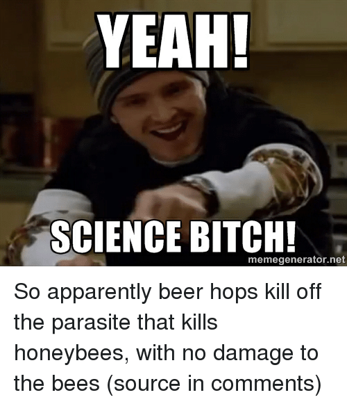 yeah science bitch meme generator net so apparently beer hops 3053734 ✅ 25 best memes about yeah science bitch yeah science bitch memes