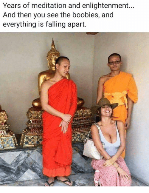 Boobies, Dank, and Meditation: Years of meditation and enlightenment...  And then you see the boobies, and  everything is falling apart.