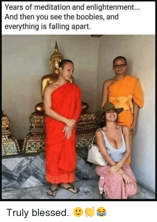 Blessed, Boobies, and Meditation: Years of meditation and enlightenment..  And then you see the boobies, and  everything is falling apart. <p>Truly blessed. 🙂👏😂</p>