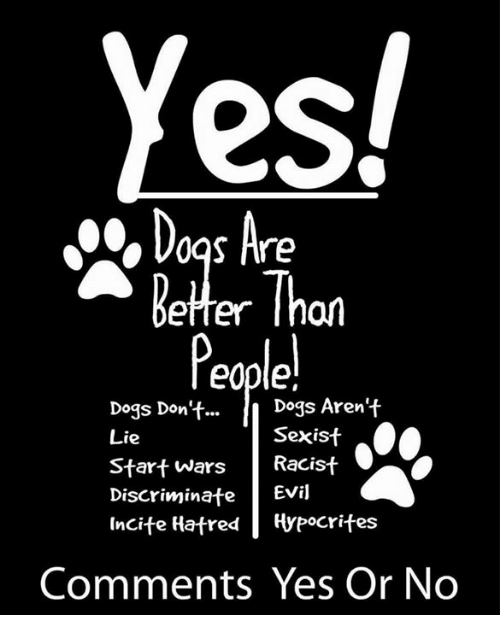 Memes, Hypocrite, and Hatred: Yes!  Dogs Are  Better Thon  Dogs Aren't  Dogs Don't...  Sexist  Lie  Start Wars  Racist  Discriminate  Evil  Incite Hatred Hypocrites  Comments Yes Or No