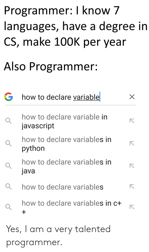 Yes, Talented, and Programmer: Yes, I am a very talented programmer.