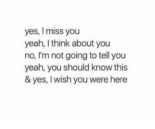 Yes I Miss You Yeah I Think About You No Im Not Going To Tell You