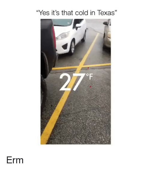 "Memes, Texas, and Cold: ""Yes it's that cold in Texas"" Erm"