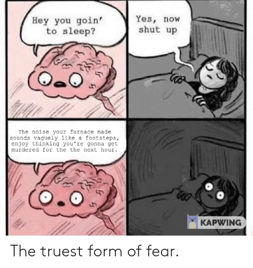 Shut Up, Fear, and Sleep: Yes, now  shut up  Hey you goin'  to sleep?  The noise your furnace made  sounds vaguely like a footsteps,  enjoy thinking you're gonna get  murdered for the the next hour.  KAPWING The truest form of fear.