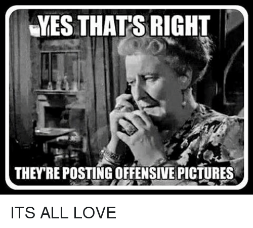 Memes, 🤖, and Offense: YES THATS RIGHT  THEYRE POSTING OFFENSIVE PICTURES ITS ALL LOVE