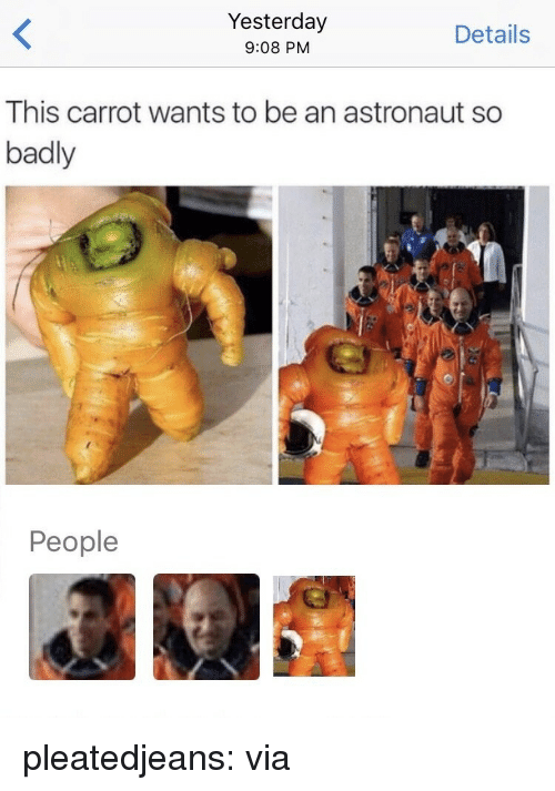 Funny, Reddit, and Tumblr: Yesterday  9:08 PM  Details  This carrot wants to be an astronaut so  badly  People pleatedjeans: via