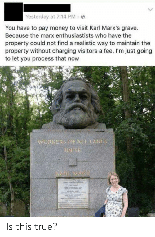 Money, True, and Who: Yesterday at 7:14 PM-  You have to pay money to visit Karl Marx's grave  Because the marx enthusiastists who have the  property could not find a realistic way to maintain the  property without charging visitors a fee. I'm just going  to let you process that now  WORKERS OF ALT AN  UNIE Is this true?