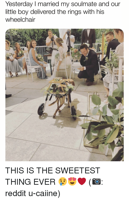 Memes, Reddit, and The Sweetest Thing: Yesterday I married my soulmate and our  little boy delivered the rings with his  wheelchain THIS IS THE SWEETEST THING EVER 😢😍❤️ (📷: reddit u-caiine)