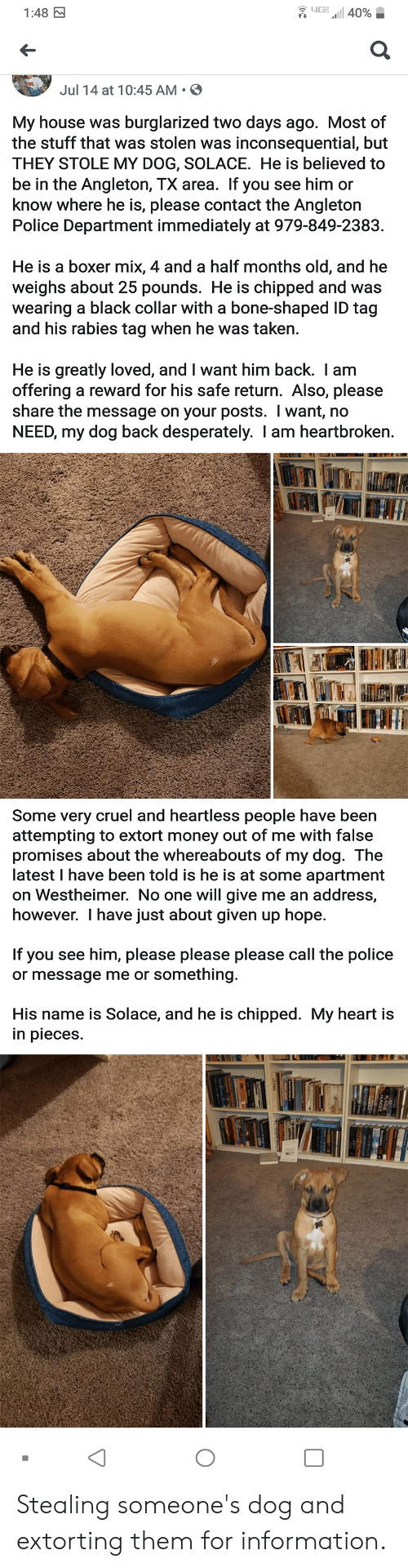 Money, My House, and Police: yG  1:48 M  a40%  Jul 14 at 10:45 AM  My house was  the stuff that was stolen was  burglarized two days ago. Most of  inconsequential, but  THEY STOLE MY DOG, SOLACE. He is believed to  be in the Angleton, TX area. If you see him or  know where he is, please contact the Angleton  Police Department immediately at 979-849-2383  He is a boxer mix, 4 and a half months old, and he  weighs about 25 pounds. He is chipped and was  wearing a black collar with a bone-shaped ID tag  and his rabies tag when he was taken.  He is greatly loved, and I want him back. I am  offering a reward for his safe return. Also, please  share the message on your posts. I want, no  NEED, my dog back desperately. I am heartbroken.  Some very cruel and heartless people have been  attempting to extort money out of me with false  promises about the whereabouts of my dog. The  latest I have been told is he is at some apartment  on Westheimer. No one will give me  however. I have just about given up hope  an address,  If you see him, please please please call the police  something  or message me or  His name is Solace, and he is chipped. My heart is  in pieces Stealing someone's dog and extorting them for information.