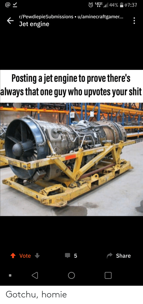 """Homie, Jet, and Who: @  YG  7""""al