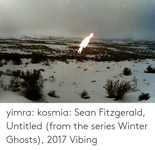 Target, Tumblr, and Winter: yimra: kosmia:  Sean Fitzgerald, Untitled (from the series Winter Ghosts), 2017   Vibing