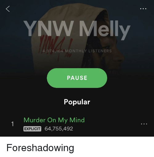 YNW Melly 974164 MONTHLY LISTENERS PAUSE Popular Murder on
