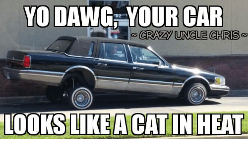Yo Dawg Your Car Crazy Uncle Chris Looks Like Acat In Heat Crazy
