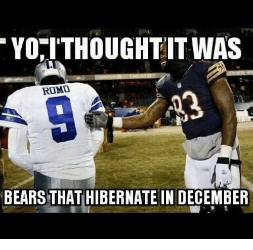 Nfl, Bears, and Hibernate: YORITHOUGHT IT WAS  ROMO  BEARS THAT HIBERNATE IN DECEMBER