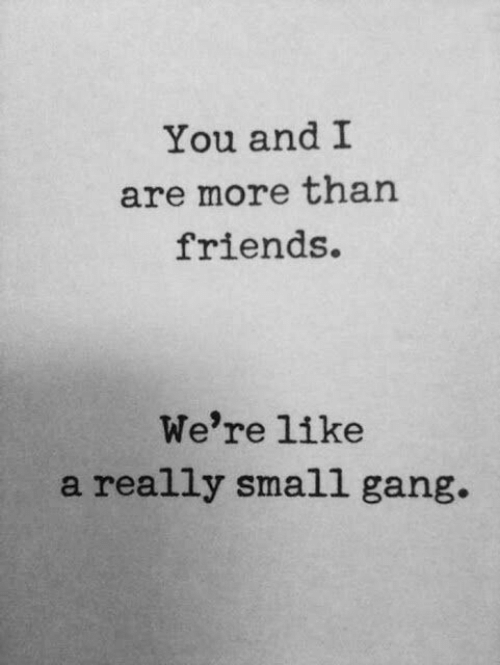 Friends, Gang, and You: You and I  are more than  friends.  We're like  a really small gang.