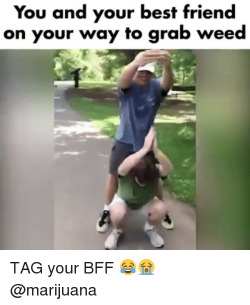 Best Friend, Weed, and Best: You and your best friend  on your way to grab weed TAG your BFF 😂😭 @marijuana