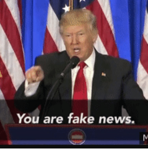 you-are-fake-news-16237603.png