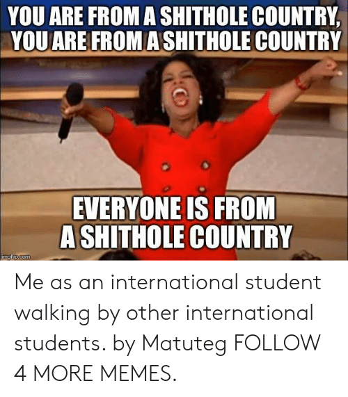 Dank, Memes, and Target: YOU ARE FROM A SHITHOLE COUNTRY  YOU ARE FROM ASHITHOLE COUNTRY  EVERYONE IS FROM  A SHITHOLE COUNTRY  imgflip.com Me as an international student walking by other international students. by Matuteg FOLLOW 4 MORE MEMES.