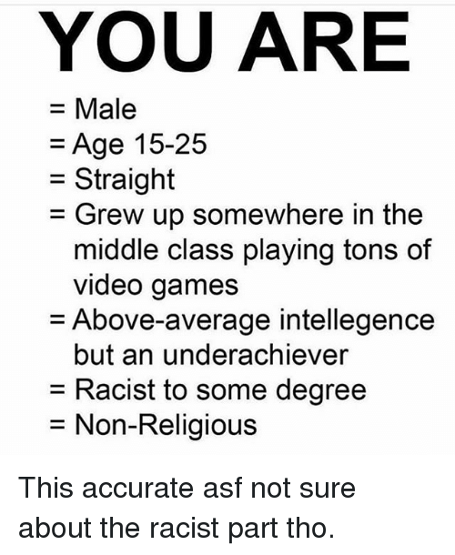Memes, Video Games, and Games: YOU ARE  = Male  =Age 15-25  = Grew up somewhere in the  Straight  middle class playing tons of  video games  Above-average intellegence  but an underachiever  = Racist to some degree  = Non-Religious This accurate asf not sure about the racist part tho.