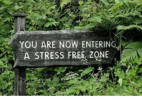 Free, Stress, and You: YOU ARE NOW ENTERING,  A STRESS FREE ZONE