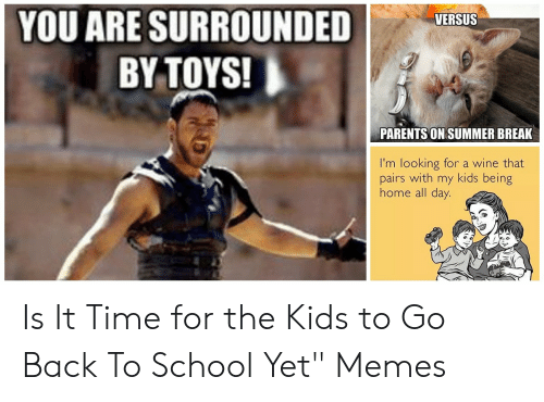 You Are Surrounded I By Toys Versus Parents On Summer Break I M