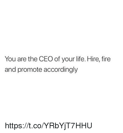Fire, Life, and Memes: You are the CEO of your life. Hire, fire  and promote accordingly https://t.co/YRbYjT7HHU