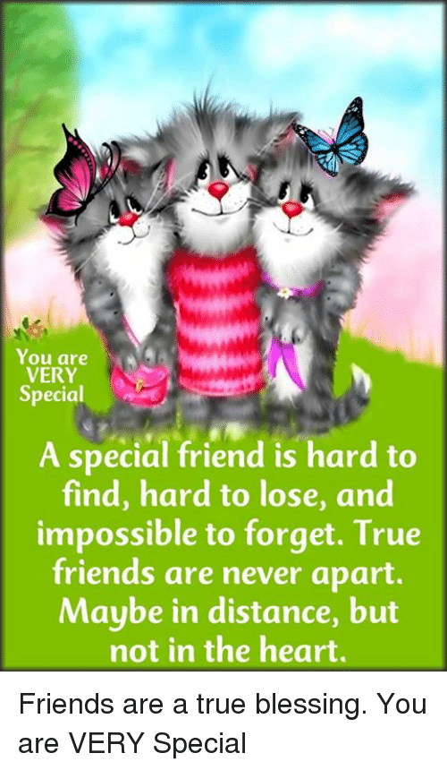 You Are Very Special A Special Friend Is Hard To Find Hard To Lose