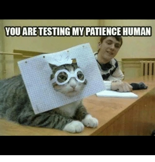Memes, Patience, and 🤖: YOU ARETESTING MY PATIENCE HUMAN