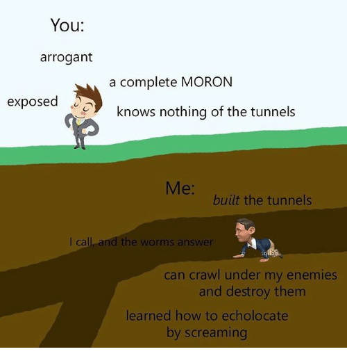 Arrogant, How To, and Dank Memes: You:  arrogant  a complete MORON  exposed .  knows nothing of the tunnels  Me:  built the tunnels  I call, and the worms answer  can crawi under my enemies  and destroy them  learned how to echolocate  by screaming